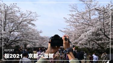 桜2021 琵琶湖疏水〜蹴上インクライン