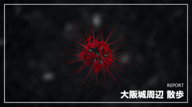 大阪城周辺 散歩【NIKKOR Z 50mm f/1.2 S・105mmf/2.8】